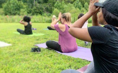 Combining Nature & Meditation: The Outdoor Journal Tour